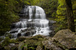 Pearsons Falls, North Carolina - 176536654