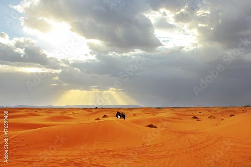 Papiers peints Maroc Sunset in the Sahara desert. Africa. Morocco.