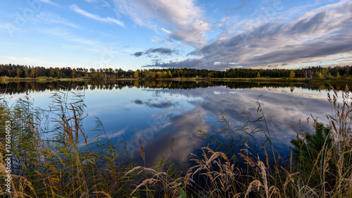 Aluminium Grijze traf. autumn colored trees on the shore of lake with reflections in water