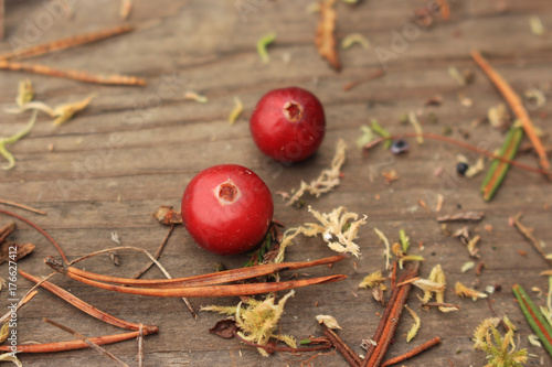 Poster Two red cranberries on wooden background