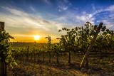 Toscana tramonto