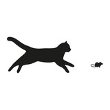 cat running behind the mouse on a white background