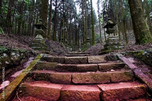 Papiers peints Route dans la forêt 山奥の神社