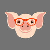 pig  face head glasses vector illustration style flat  - 176644605