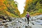 紅葉の渓谷を歩く - 176669858