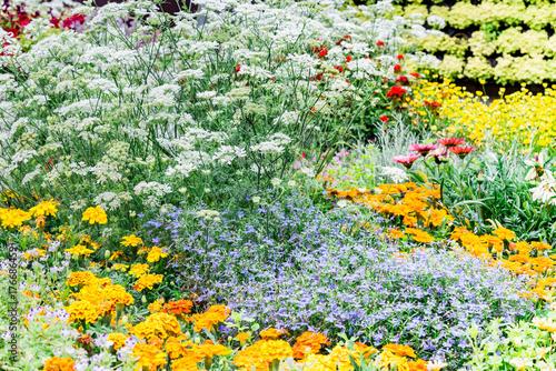 Fotobehang Azalea Pretty manicured flower garden with colorful azaleas.