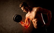 Fit bodybuilder lifting weight with red muscle concept