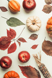 Autumn flat lay composing with pumpkin, apples and fall leaves , top view - 176693013