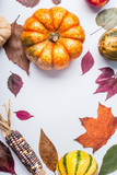 Autumn flat lay composing with pumpkin, apples and fall leaves , top view - 176693038
