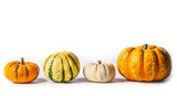 Various Pumpkin on white background, flat lay, border, front view. Thanksgiving symbol - 176693085
