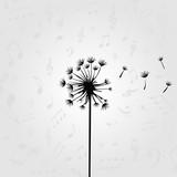 Black and white dandelion design for card, poster, invitation. Dandelion vector illustration