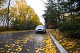 Japanese hatchback on autumn road