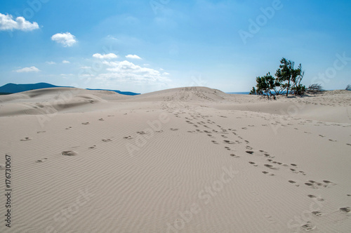 Fotobehang Blauw Blue sky, clear sea and sand dunes on the island of Sardinia