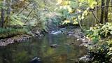 ruisseau de montagne - 176739610