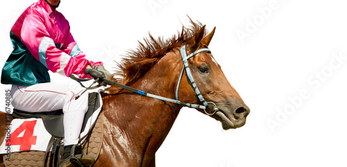In de dag Art Studio Jokey on a thoroughbred horse runs isolated on white background