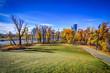 Calgary Skyline framed by fall colours