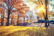 Quadro Central park in New York City at autumn morning, USA