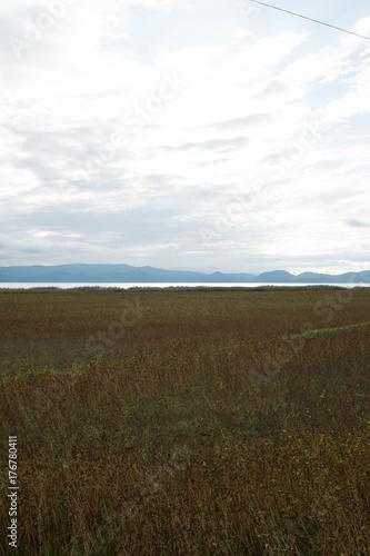ソバ畑と猪苗代湖 Poster