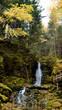 Autumn Dixon Falls