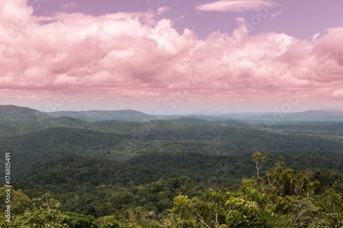 Fotobehang Lichtroze Rainforest Sky