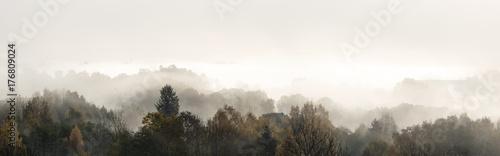 Radient fogg
