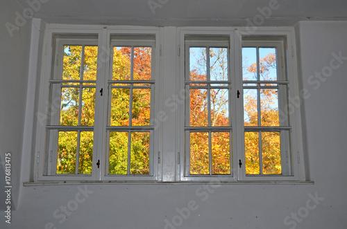 alte Kastenfenster - 176813475