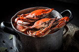 Ingredients for homemade crab in a old metal pot - 176814857