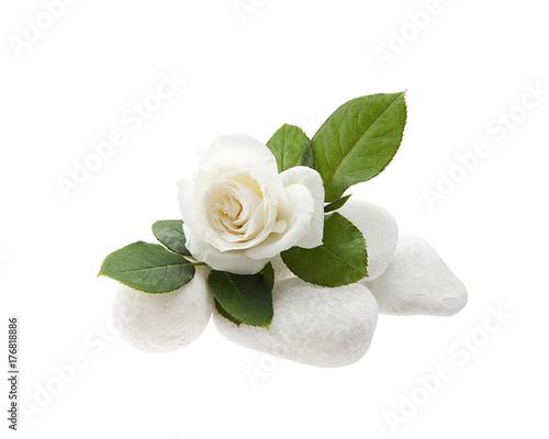 spa de rosa y piedras en fondo blanco