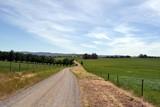 The dirt road in a farm, Victoria, Australia - 176823476