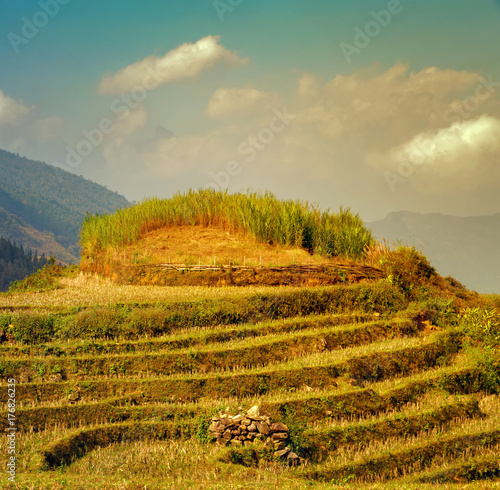 Deurstickers Rijstvelden village agriculture Terraced Rice Field hill