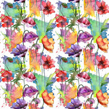 Wildflower poppy flower pattern in a watercolor style. Full name of the plant: poppy. Aquarelle wild flower for background, texture, wrapper pattern, frame or border. - 176827454