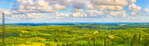 Papiers peints Photos panoramiques Coniferous forest and meadows. Panorama