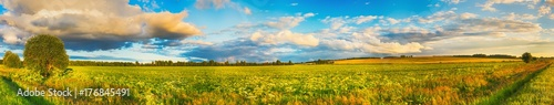 Foto op Canvas Honing Rural landscape. Panorama