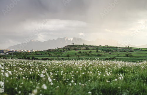 Fotobehang Wit Paisaje lluvioso