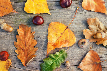 Autumn leaves on wooden background,top view