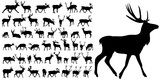 silhouette of deer, collection - 176884600