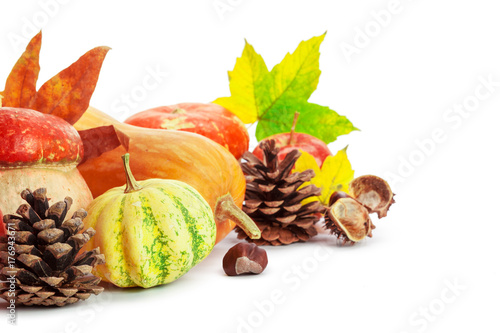Autumn display with pumpkin and leaves isolated on white background Poster