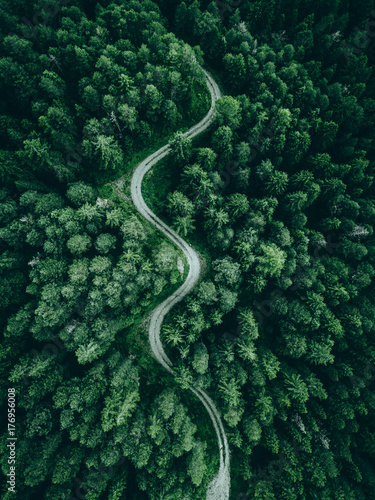 Foto op Plexiglas Natuur Road in the middle of the forest from above