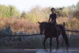 Young pretty girl riding a horse with backlit leaves behind - 176961296