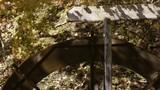 森の水車 紅葉風景 - 176984639