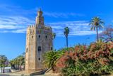 Vista da Torre do Ouro em Sevilha Espanha - 176987609