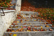 Stone stairs in autumn season - 177004096