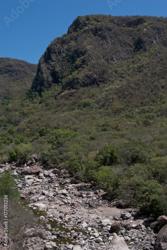 Papiers peints Rivière de la forêt Copper Canyon Railway. Mexico