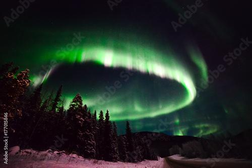Aluminium Noorderlicht Auroras, northern BC, Canada