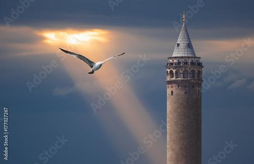 Galata Tower, Galata Bridge, Karakoy district and Golden Horn at morning, istanb Poster