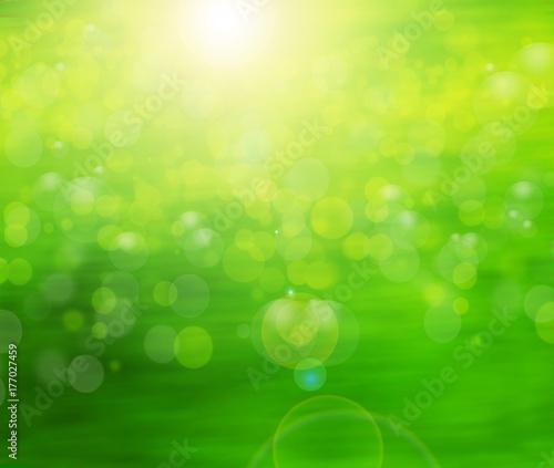 Fotobehang Lime groen fondo verde de naturaleza , desenfocado por el sol