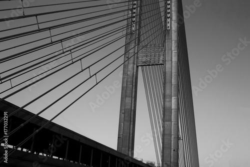 Czarno-biały most