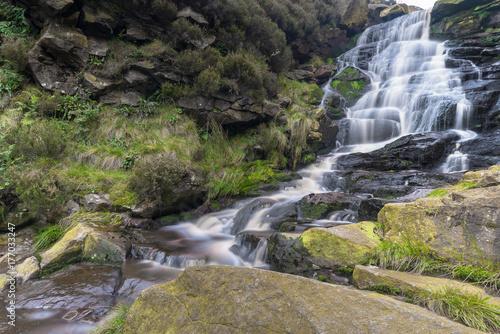 Saddleworth Moor - 177033247