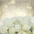 Bunch of white blooming fresh rose flowers over silver shining background