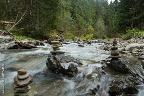 Fotobehang Bergrivier mountain river with stones, forest and rocks background